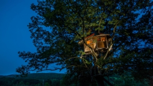 Tree-Mendous Aerial Adventures is based out of Columbia County and designs and constructs private treehouses, canopy zip lines and jump towers.